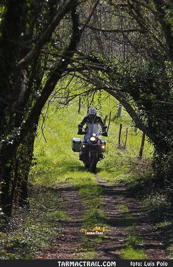 Motos Trail - BMW R1200GS - 105 10-11-2016