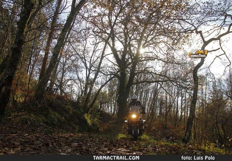 Motos Trail - BMW R1200GS - 115 19-01-2017