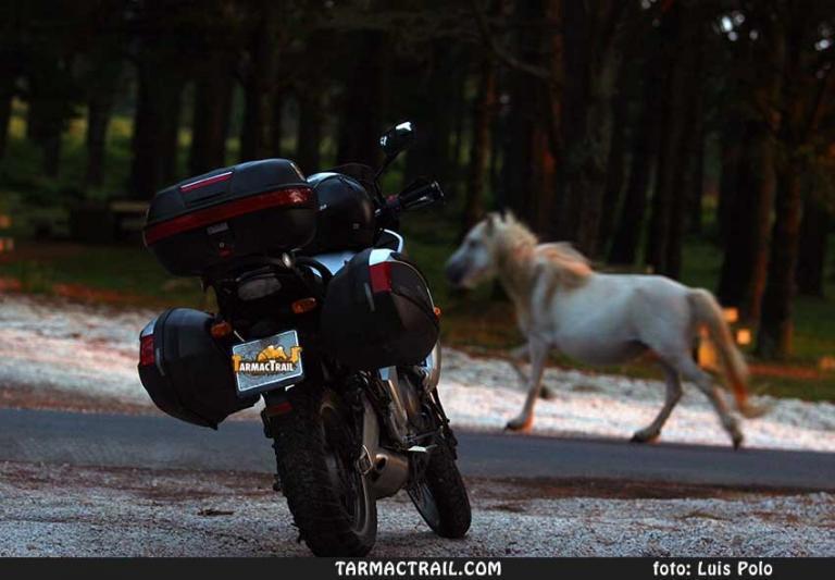 Motos Trail - La Foto del Jueves 022 19-02-2015